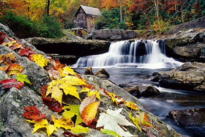 Autumn Leaves at Glade Creek Mill by Gary Thompson